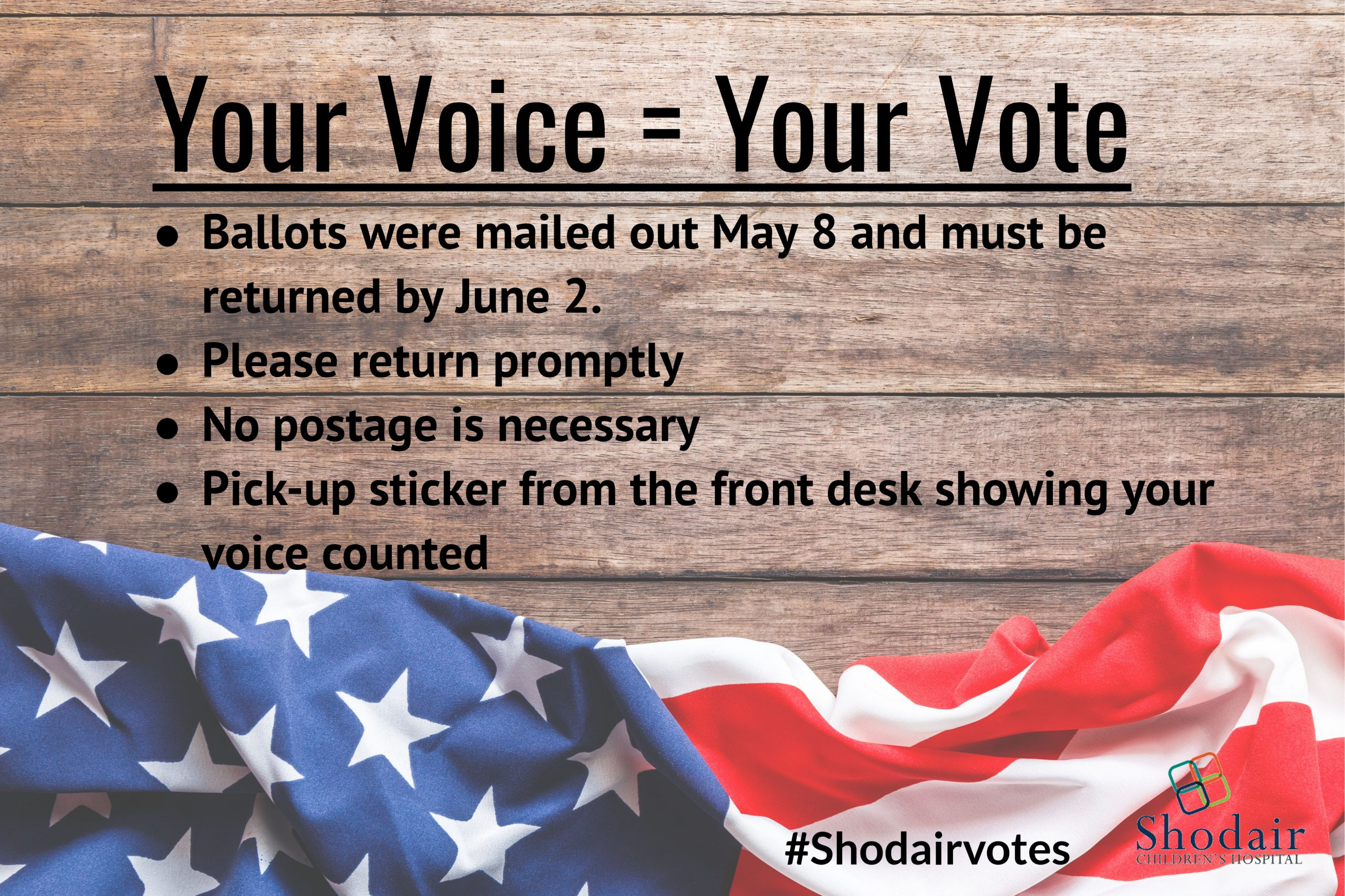 Your Voice = Your Vote